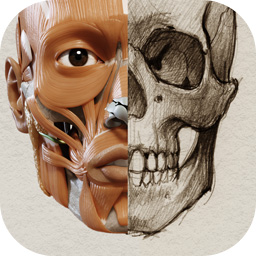 Anatomy for the Artist - App for iPhone, iPad, Mac OS and